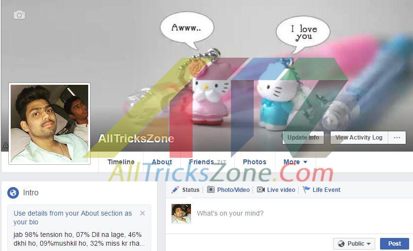 Hide last Name On Facebook