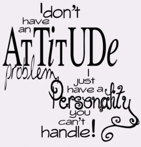 i-dont-have-an-attitude-problem-whatsapp-dp-983x1024