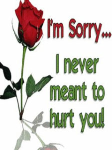 i_am_sorry_red_rose-whatsapp-dp