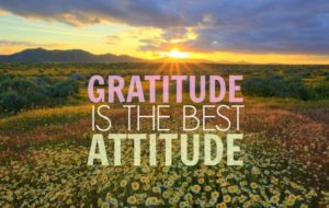 gratitude-is-the-best-attitude-whatsapp-dp